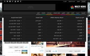 MultiNews2